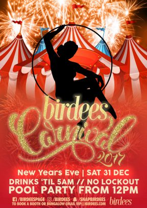 Birdees' New Year's Eve Carnival 2017
